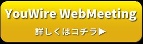 YouWire WebMeeting